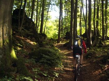 Felsenwälder im Bereich des Schwarzen Brands. Wer behauptet, jeden Pfad zwischen den felsigen Kuppen zu kennen, lügt mit großer Wahrscheinlichkeit.