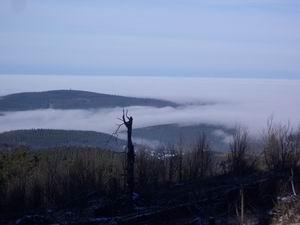 """Die Höhenverhältnisse werden deutlich, wenn ganz Rhein-Main """"unten"""" im Nebel sitzt."""